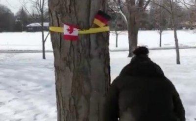 """加拿大挂德国国旗""""迎接""""比利时国王 因两国国旗相似闹乌龙"""