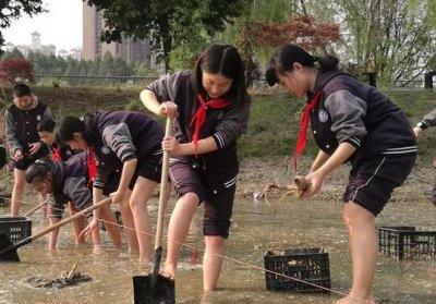"""成都一中学设""""校园农场"""" 学生上课就是栽花捕鱼非常有趣"""