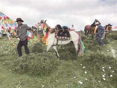 乐都区第七届民族民间赛马大会8月1日在中岭乡平坦村举行