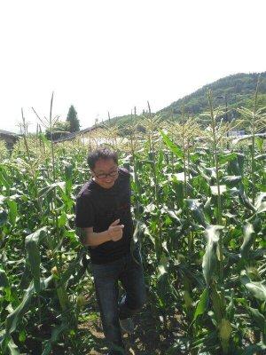 叶传名院长与农业专家组前往日本考察调研
