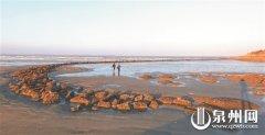 惠安崇武镇峰后村石获遗存被列入县级文保单位