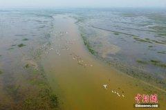 中国各类自然保护地已达1.18万处 占国土面积18%以上