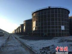 """2018年黑龙江粮食总产量达1501.4亿斤 实现""""十五连丰"""""""