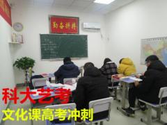 武汉艺考生文化课 科大艺考用实力助力高考