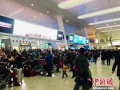 春节假期杭州市内公交运输旅客1963.48万人次 为去年同期109.86%