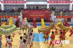 长沙望城区第六届民俗文化艺术节开幕 12支龙狮队伍进行龙狮展演