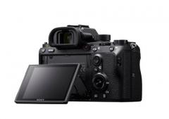 索尼全画幅微单A9 搭配索尼G大师镜头SEL400F28GM 你的生态摄影最佳拍档
