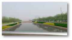 自吸水道路花箱—河南城市园丁,科技助力城市绿化