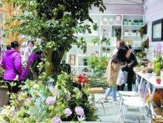 北京植物园首次开放园艺生活馆