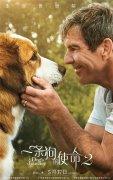 电影《一条狗的使命2》发布定档预告 宣布内地定档5月17日