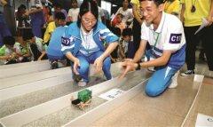 惠州市首届创意机器人大赛举行 197名学生同场竞技