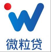 微粒贷 推动中国普惠金融事业发展