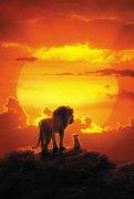 真人版《狮子王》今日内地上映 开创VR拍摄复刻非洲草原