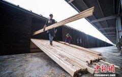4月至6月中国铁路货物发送量实现大幅增长 累计完成10.52亿吨