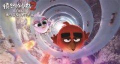 《愤怒的小鸟2》将8月16日上映 终极海报信息量巨大