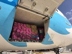 """南航波音787""""大肚皮""""飞机装载西梅销往广州上海市场"""