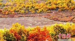 """""""十一""""黄金周内蒙古旅游人数大幅增长 旅游者约达1500万人次"""