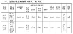蚌埠公开出让三宗地块使用权 11月22日起拍卖