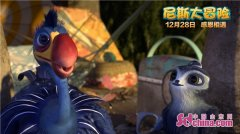 """《尼斯大冒险》曝""""落跑飞鸡""""片段 将于12月28日上映"""
