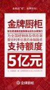"""金牌厨柜推出抗击疫情第二招""""同袍计划"""":金融支持额度5亿"""