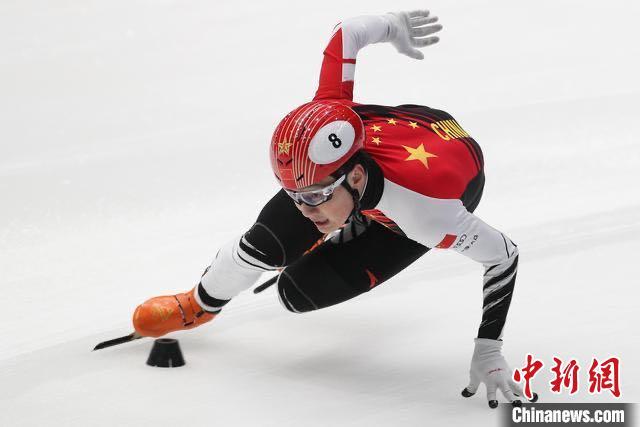 任子威在比赛中 黑龙江省体育局提供 摄