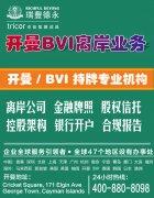 百慕大 BVI 开曼注册公司的比较,三地公司设立流程条件对比-瑞丰德永