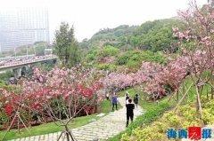 4月1日起厦门市旅行社将恢复本市范围内团队旅游活动