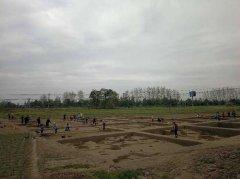 成都市石桥林遗址和白庙子墓地考古发掘工作将开工